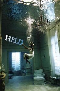 Field93